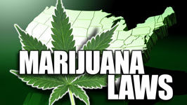 A Quick Guide to Current Marijuana Laws