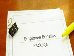 vested-employment-benefit-rights